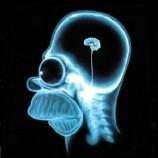 Neuromania: il cervello è così importante?