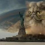 Hurricane che abbaia non morde