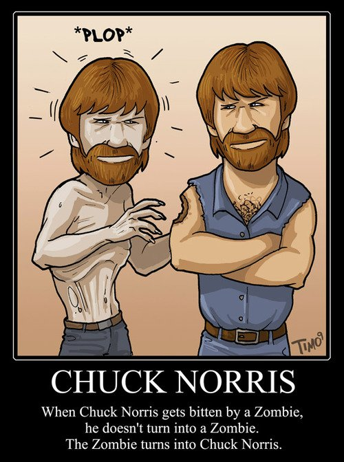 one-and-only-chuck-norris16