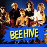 """Il declino delle api ovvero il """"Colony Collapse Disorder"""""""