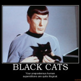 black-cats-cats-spock-star-trek-superstition-demotivational-poster-1274151429-png