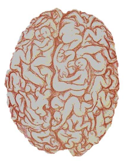 Sex brain static
