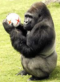 Optì Optà e la sua palla