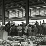 fish market in jakarta