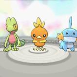 Pokemon ORAS June 12 screenshot 5 (1)