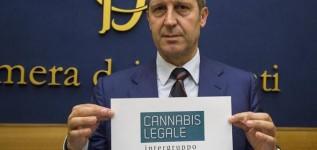 Cosa prevede la legge sulla legalizzazione della cannabis