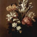 Tulipomania: la prima bolla