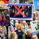 AfD: quale alternativa per la Germania?