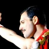 Freddie, i 70 anni di una leggenda