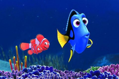 I protagonisti Dory, Marlin e Nemo