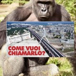 Harambe bridge is (almost) reality