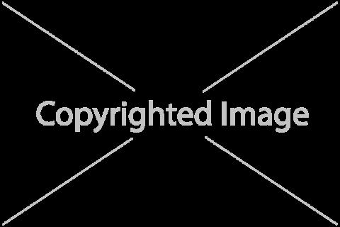 Esempio di watermark visibile