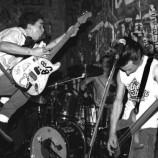 Green Day for dummies: Si sono svegliati