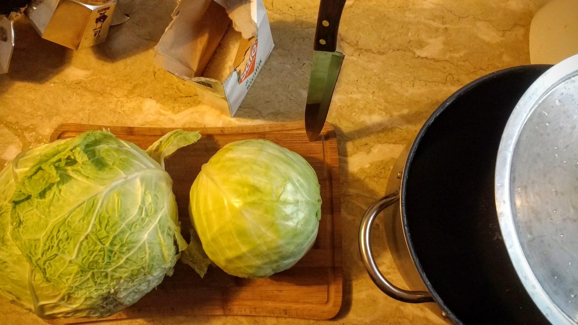Verza e Cavolo insieme doneranno consistenze diverse ai vostri Crauti, morbida la prima croccante il secondo
