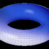 Premio Nobel per la Fisica 2016: Istruzioni per l'uso