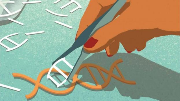 CRISPR: l'eugenetica a costo zero