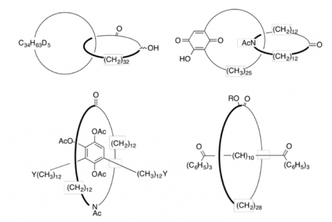 aggregati molecolari