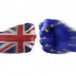 Brexit: un'intervista in diretta dalla Germania