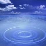 L'omeopatia – La storia e i problemi dell'acqua zuccherata