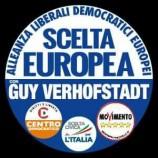 6 suggerimenti per il futuro gruppo di ALDE e M5S