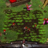 battle realms contadini