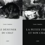 139246-le-dejeuner-du-chat-0-230-0-345-crop